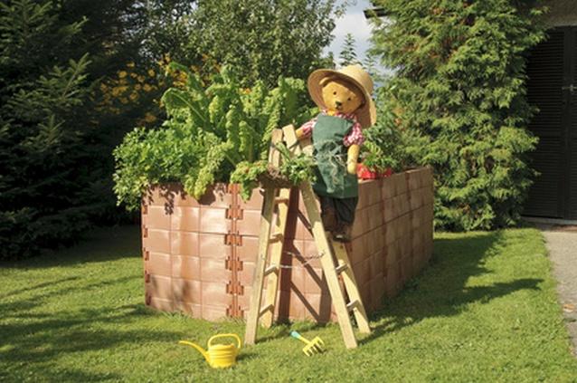 alter Teddy als Gärtner erntet Gemüse vom Hochbeet