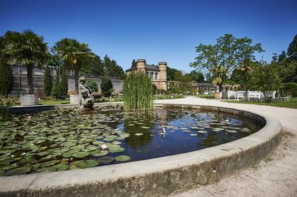 Botanischer Garten Karlsruhe Seerosenteich