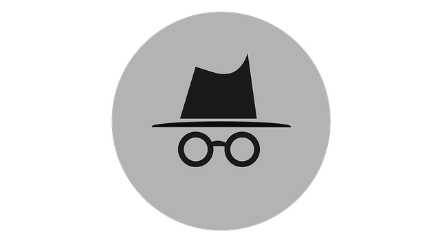 Inkognito-Modus des Browsers
